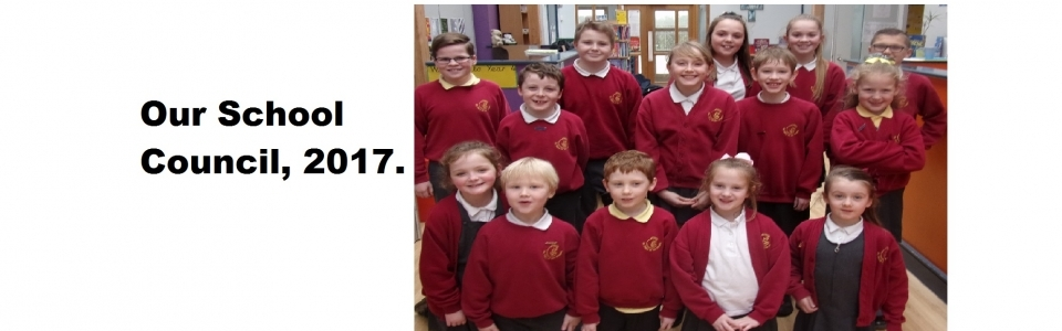 Our school council, 2017.